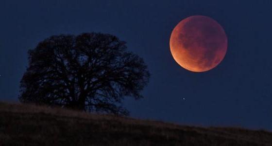 luna-piena-novembre