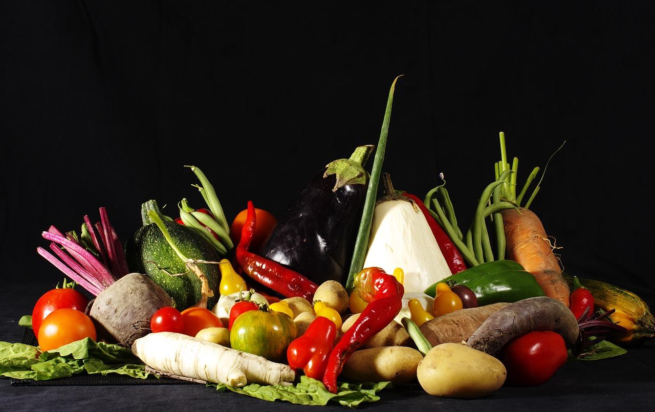 Risultati immagini per conferenza vegana